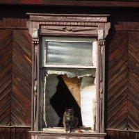 Хозяйка (хозяин?) брошенного дома :: Андрей Лукьянов