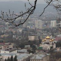 Пятигорск с горы. :: Любовь