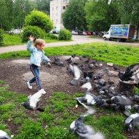 Не пугайте голубей. :: Ильсияр Шакирова
