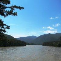 Река Катунь :: Наталья Петровна Власова