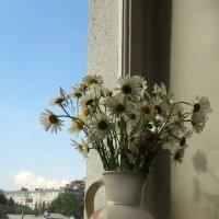 Букет полевых цветов :: Наталья (D.Nat@lia)