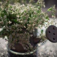 летнее настроение :: Iulia Efremova