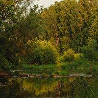 Старая плотина :: Владимир Ефимов