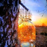 «Я в весеннем лесу пил берёзовый сок…»© (рис.) :: Глeб ПЛATOB