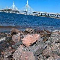 На Финском заливе :: Митя Дмитрий Митя