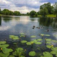 Озеро :: Алексей Ярошенко