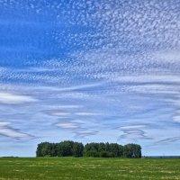 Облачная живопись на Небесном полотне ) ) :: Елена Хайдукова  ( Elena Fly )