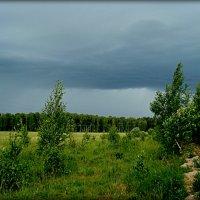 Перед грозой :: Евгения Х