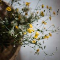 Лето-время полевых цветов :: Nika Polskaya