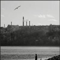 Пролетая над... :: Наталья Rosenwasser