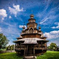 Птицы тучей :: Александр Кошалко