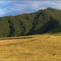 У подножия горы Церковка :: Виталий Джазатор