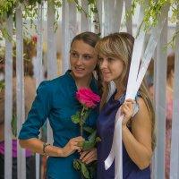 Роза и её окружение :: Алексей Соминский