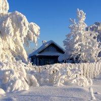 Мороз и солнце. :: Андрей Ярославцев