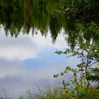 Отражение в зеркальной глади озера. :: Лариса Сафонова