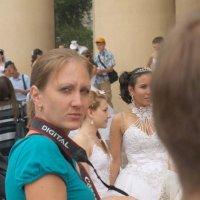 парад невест 2012 :: Алексей Короткевич
