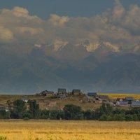 Countryside landscape :: Yelena Li
