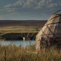 Yurt :: Yelena Li