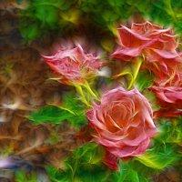 Розы :: Елена Выбиранец