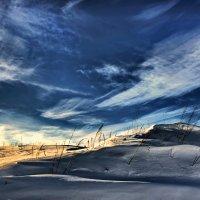 Холодный март :: Владимир Макаров