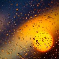 дождливый закат :: Darya Lavinskaya