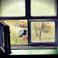 В окне... :: Елизавета Овсянникова