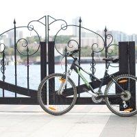 Велосипед :: Dmitry Doronin