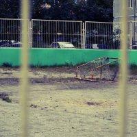 Спорт - жизнь?.. :: Роман Fox Hound Унжакоff