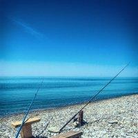 Ловись рыбка ... :: Алексей Ткачёв