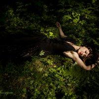 Сказки леса :: Творческая группа КИВИ