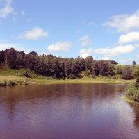 Река Иня :: Мария Барановская