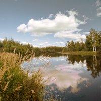 В реку смотрятся облака.... :: Алексей Хаустов