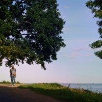 Утренняя прогулка... :: Елизавета Вавилова