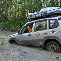 Шнивы грязи не боятся! :: Asya Piskunova