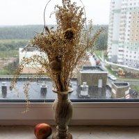 Осень пришла :: Людмила Финкель