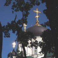 Купола :: Николаева Наталья