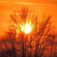 декабрьский закат :: Люба Вылывана