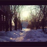 Зима :: Света Кондрашова