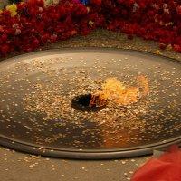 Огонь :: Света Кондрашова