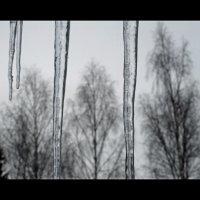 Весна :: Алексей Пышненко