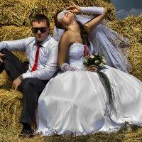 weeding :: Andrey Sobko