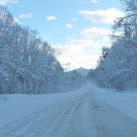 Зимняя дорога :: Ольга Иргит