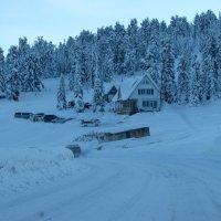 Домик в горах :: Ольга Иргит