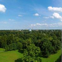 Панорамный вид с Гатчинского дворца :: Анастасия Белякова