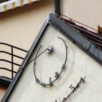 Солнечные часы :: nakip1
