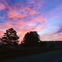 Розовый восход :: юрий Амосов