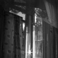 лучи в окне :: Анна Бердникова