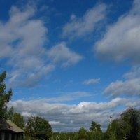 Дорога в облака :: Анна Бердникова