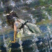 В прозрачном мире. :: Eva Tisse
