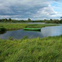 Среди зелёной тишины... :: Нэля Лысенко